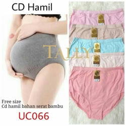 CD HAMIL UC066  large