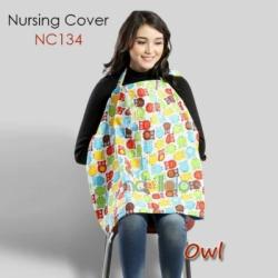 NC134 Owl  large